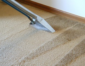 blue-springs-carpet-cleaner