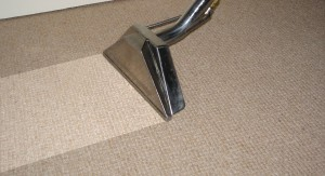 grain-valley-carpet-cleaner