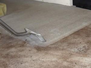 harrisonville-carpet-cleaner