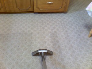 independence-carpet-cleaner